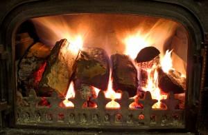 Wood burning fire 01